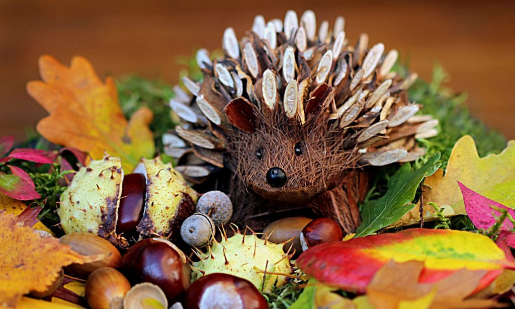 cropped-still-life-hedgehog-decoration-herbstdeko.jpg