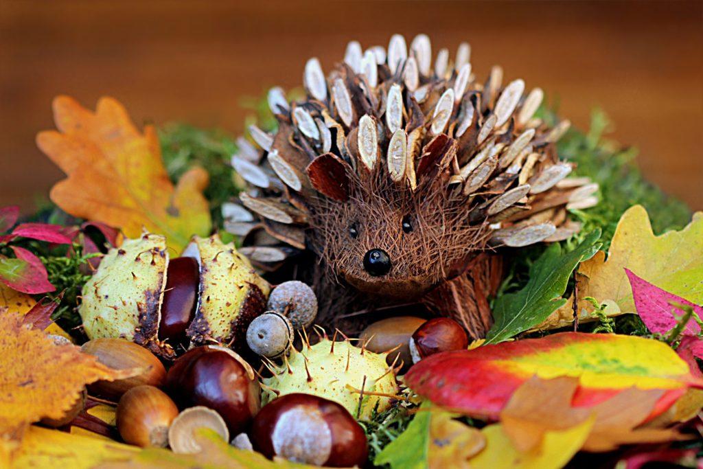 still-life-hedgehog-decoration-herbstdeko
