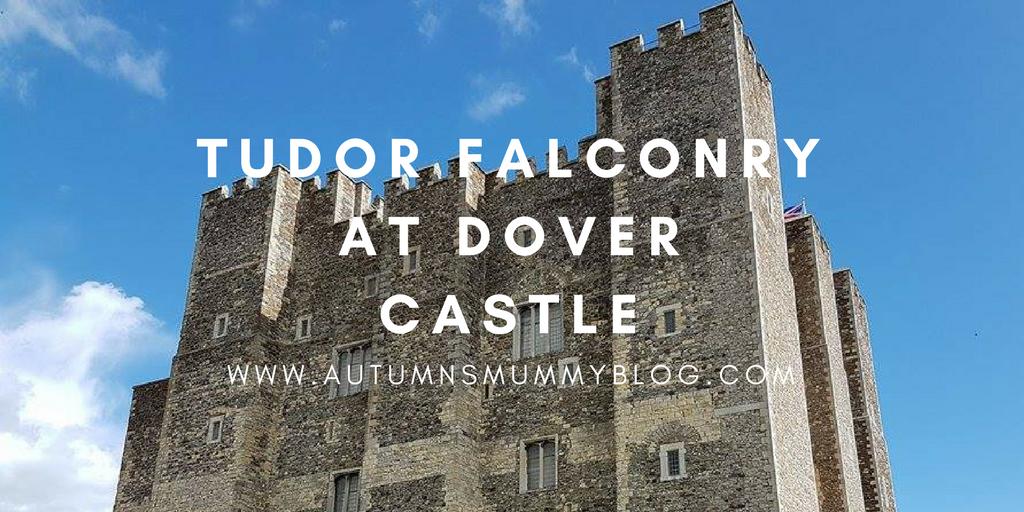 Tudor falconry at Dover Castle