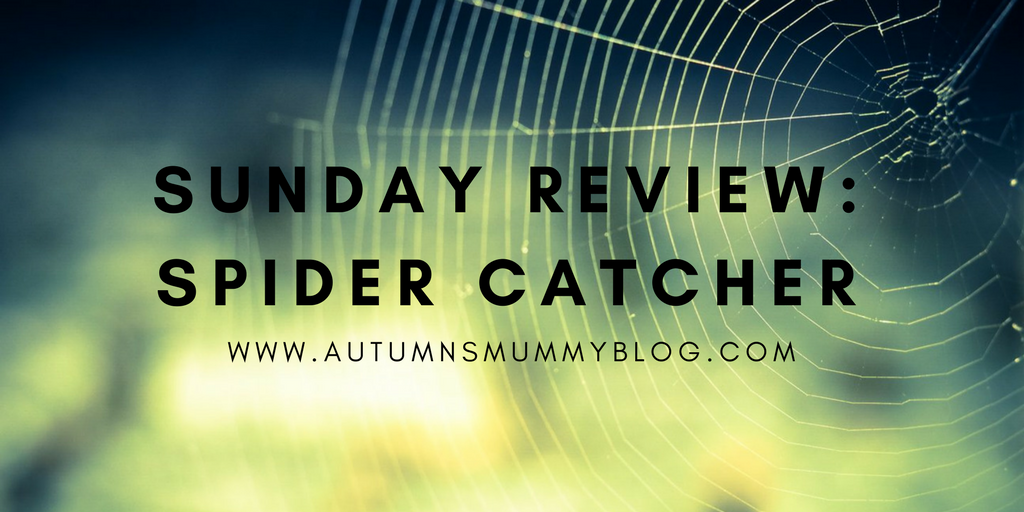 Sunday Review: Spider Catcher