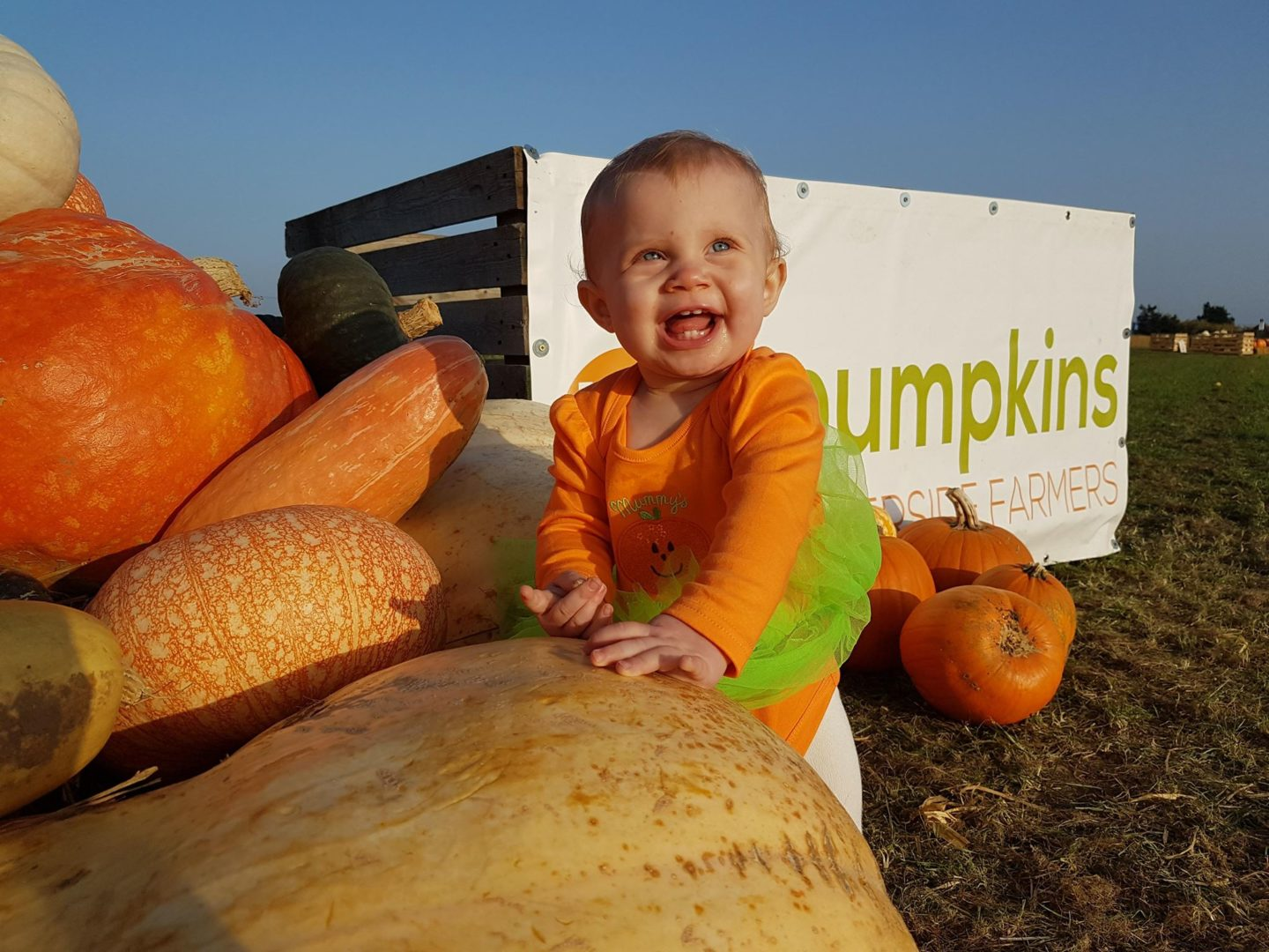 Giant pumpkin and a little baby!