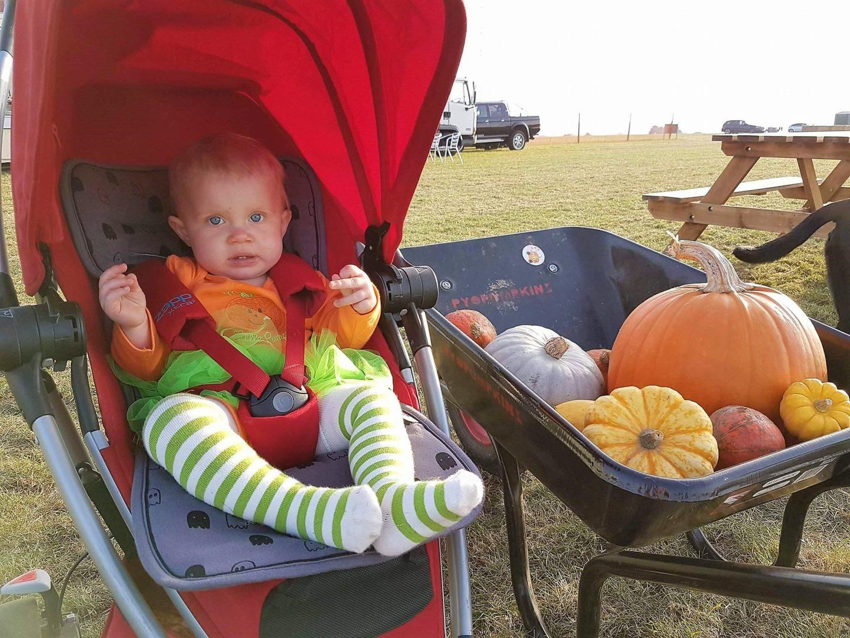PYO Pumpkin farm haul