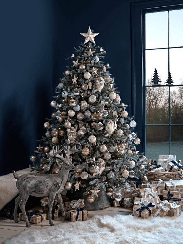 Blue Mountain Spruce Christmas Tree