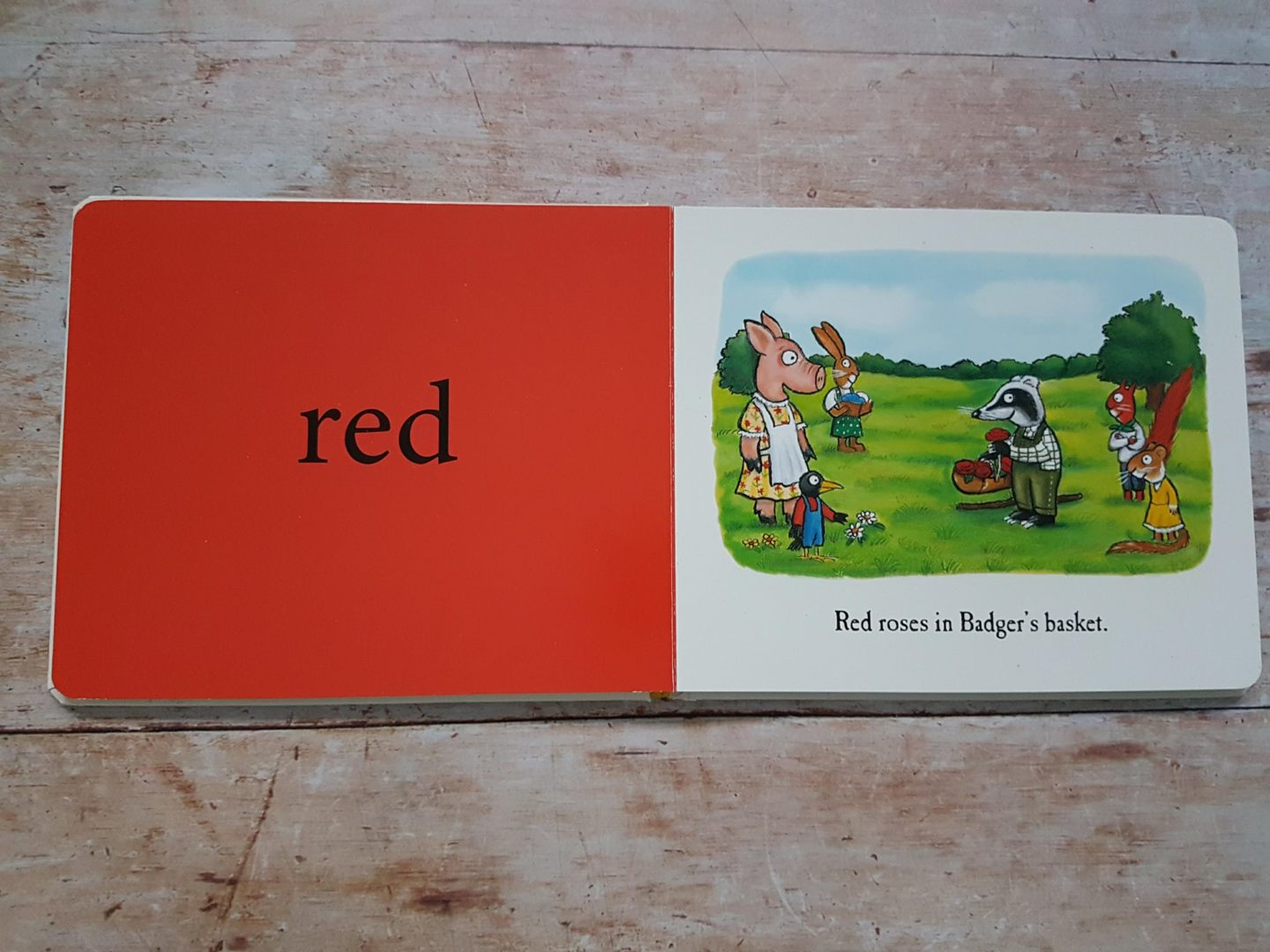 Red - Colours book by Julia Donaldson