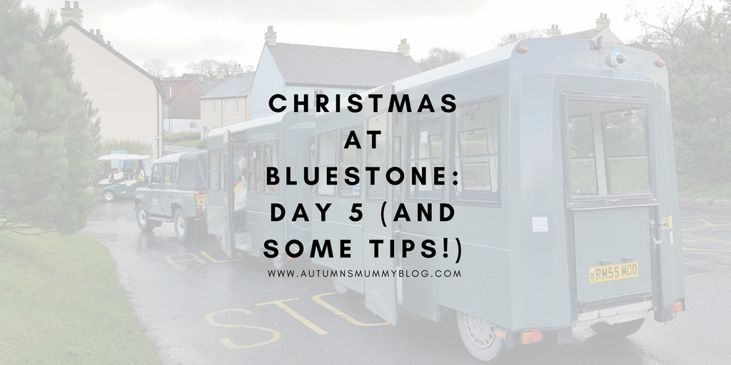 Christmas at Bluestone: Day 5 (and some tips!)