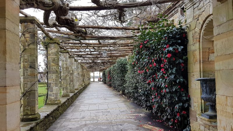 Italian Garden at Hever Castle in the spring