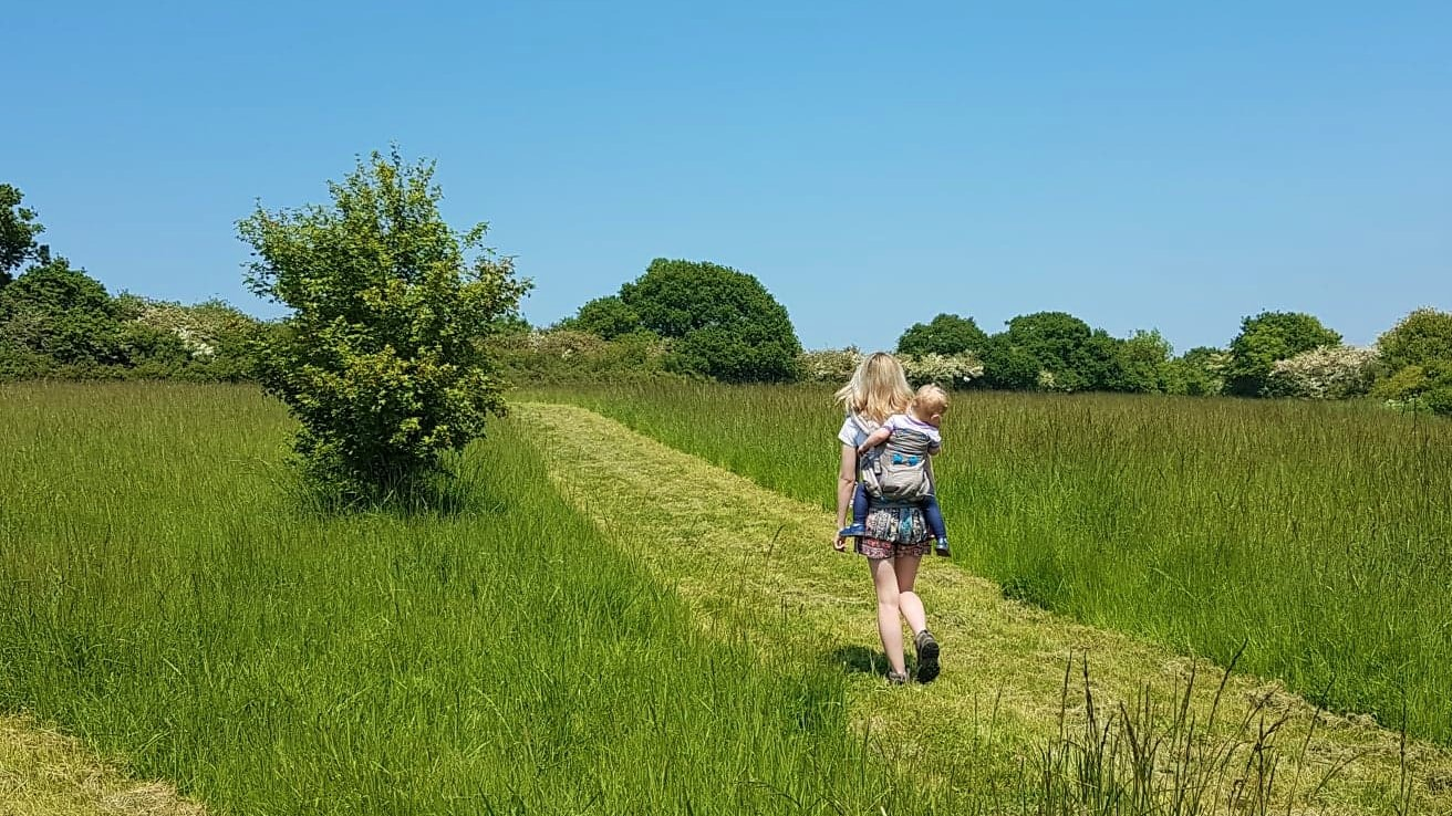 Toddler wearing with the Pao Papoose baby carrier on a countryside walk
