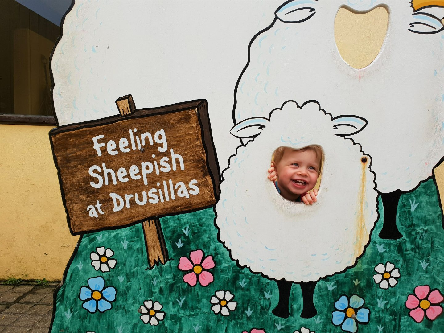 Sheep photo cutout at Drusillas Park