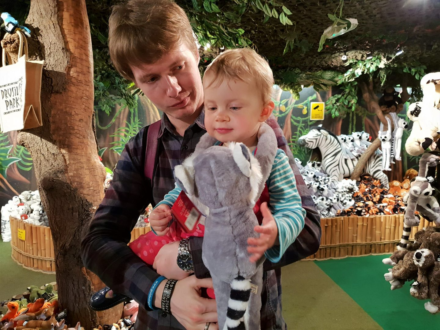 Toddler with lemur in Drusillas Park gift shop