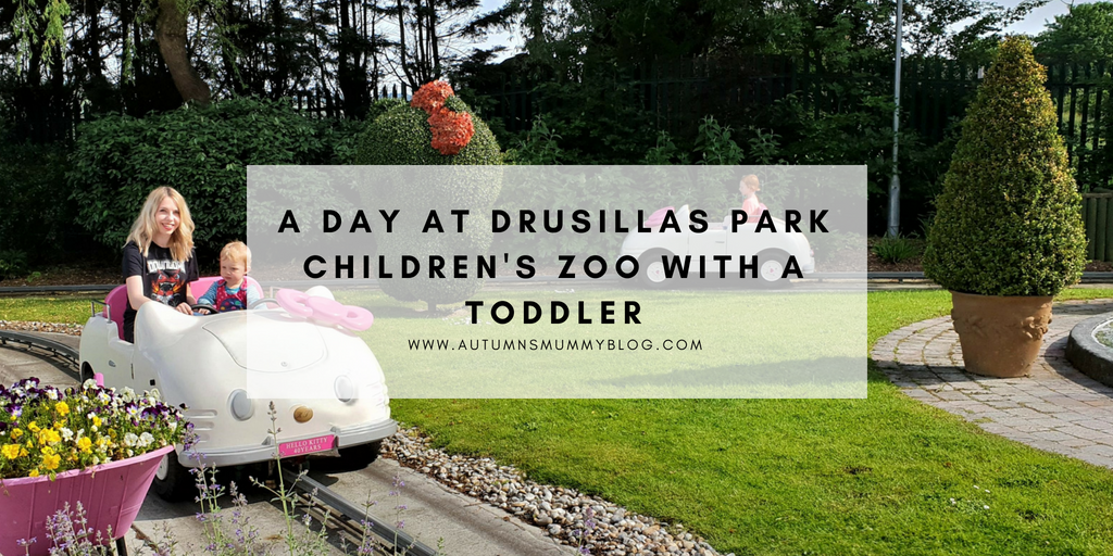 A day at Drusillas Park children's zoo with a toddler
