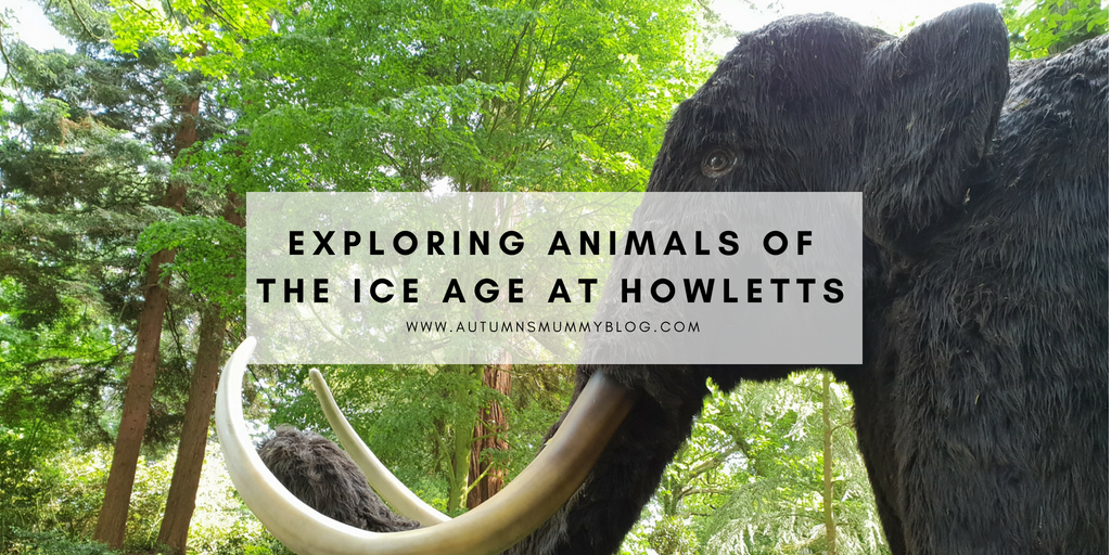 Exploring Animals of the Ice Age at Howletts