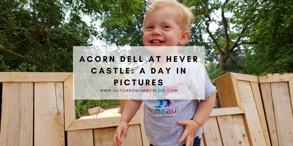 Acorn Dell at Hever Castle: A day in pictures