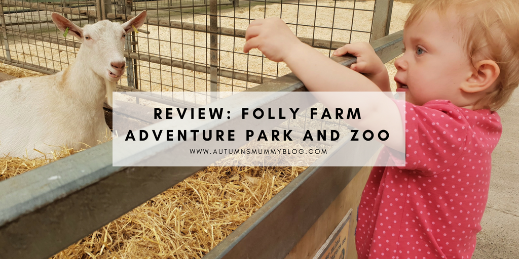 Review: Folly Farm Adventure Park and Zoo