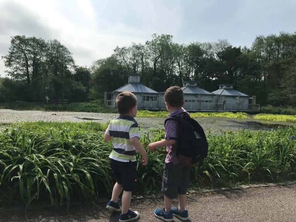 botanic garden of wales