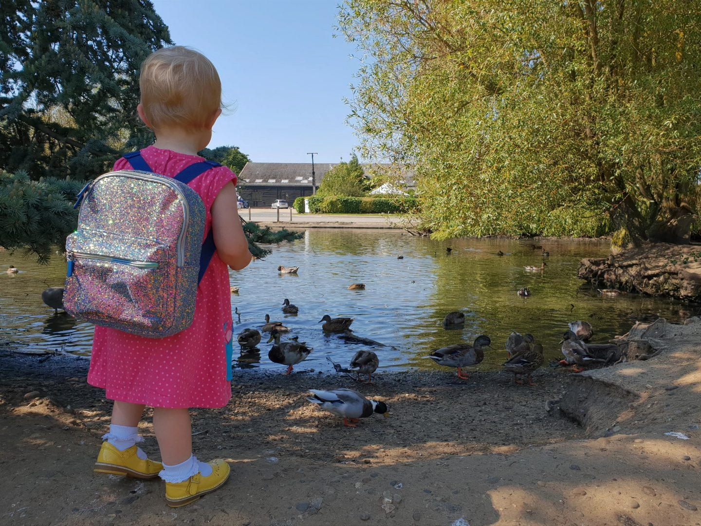 Toddler with Spearmark lunch backpack at duck pond