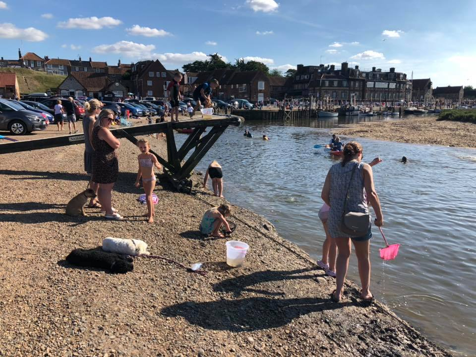 crabbing and mud sliding in blakeney, norfolk