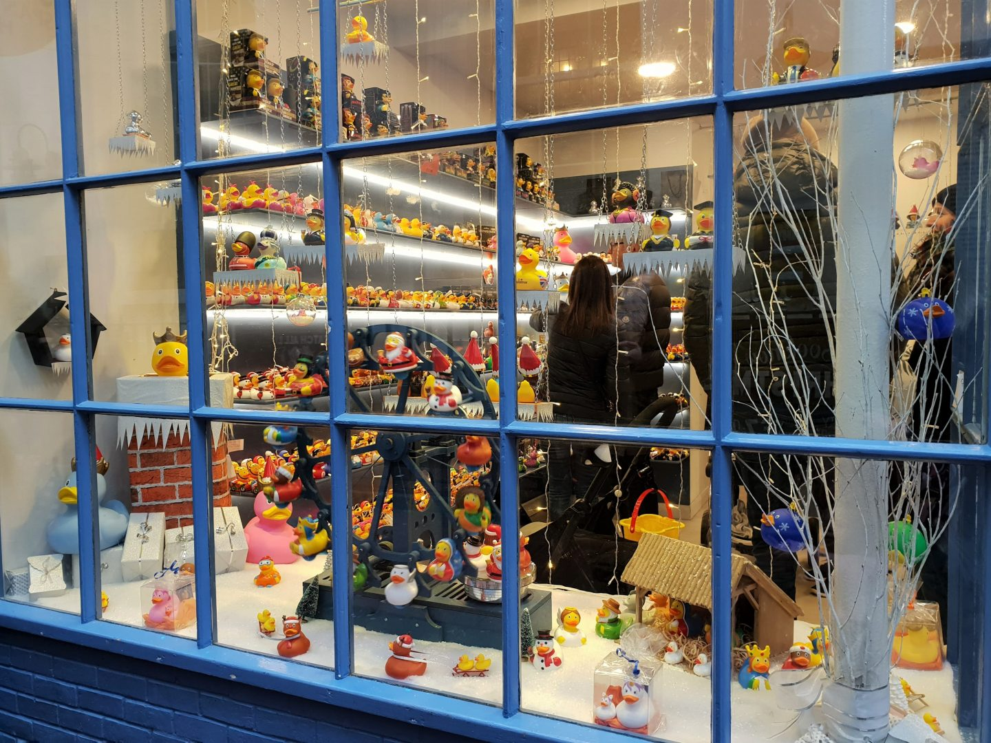 Window display of The Duck Corner in Brighton, lots of rubber ducks of assorted shapes and sizes