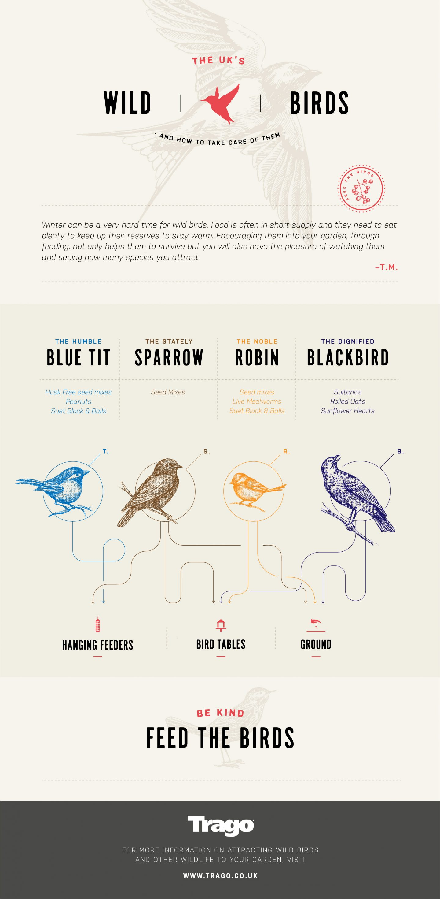 An infographic about British wild birds and what to feed them in the winter