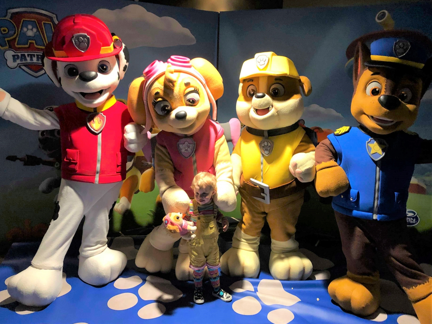 Marshall, Skye, Rubble and Chase at PAW Patrol: Mighty Pups Showcase Cinema preview