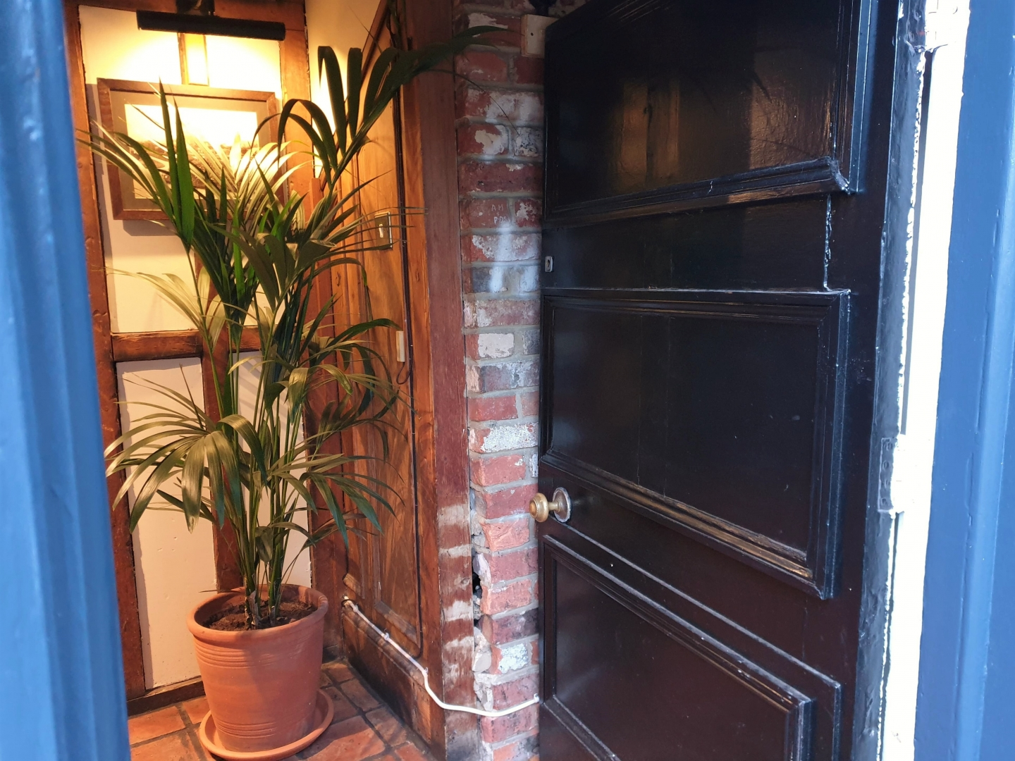 Open door and plant at The Lion in Farningham