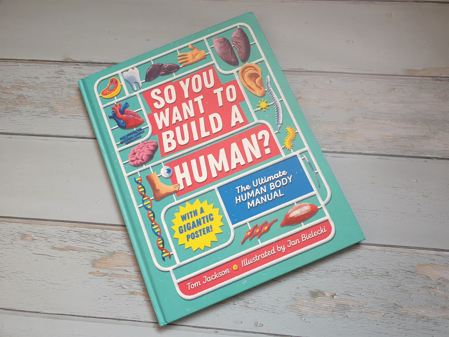 So you want to build a human? by Tom Jackson