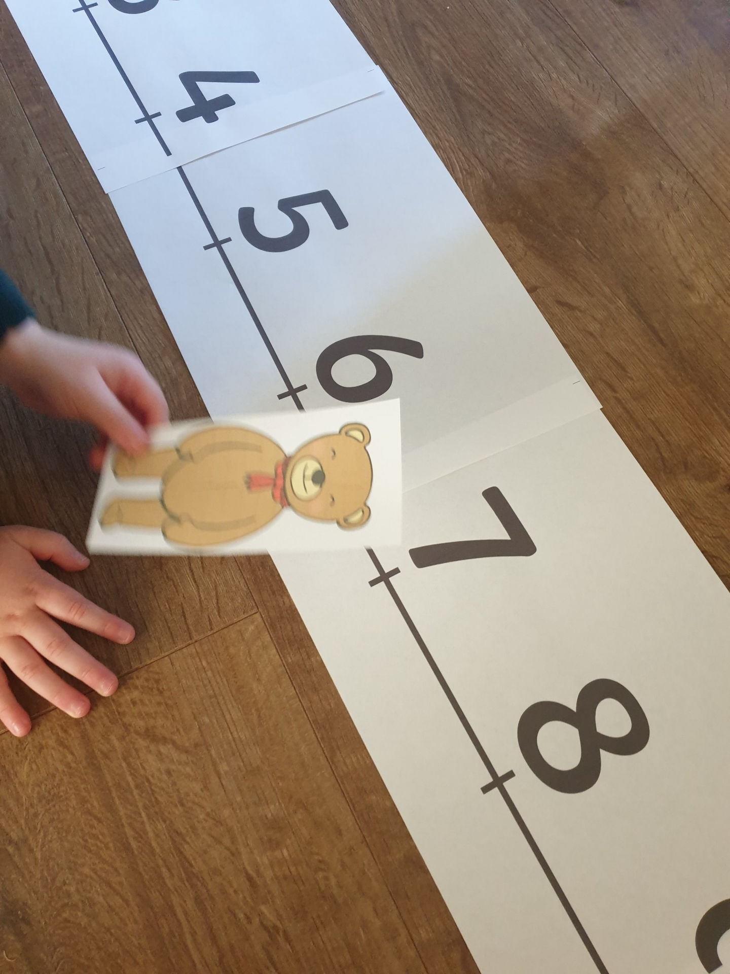 Teddy bear number line