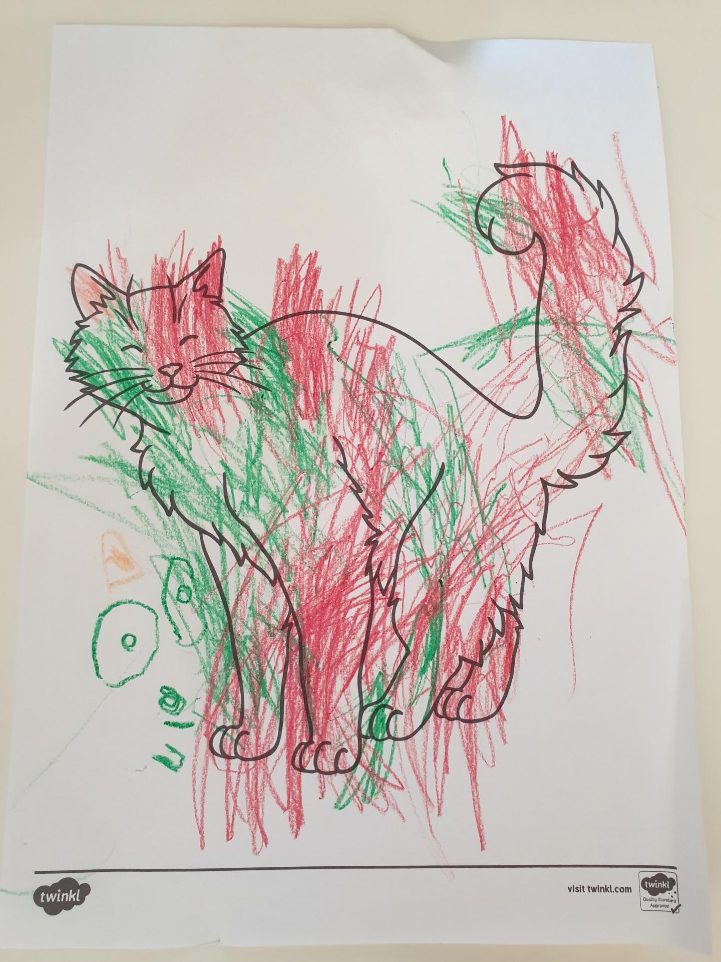 Preschooler cat colouring