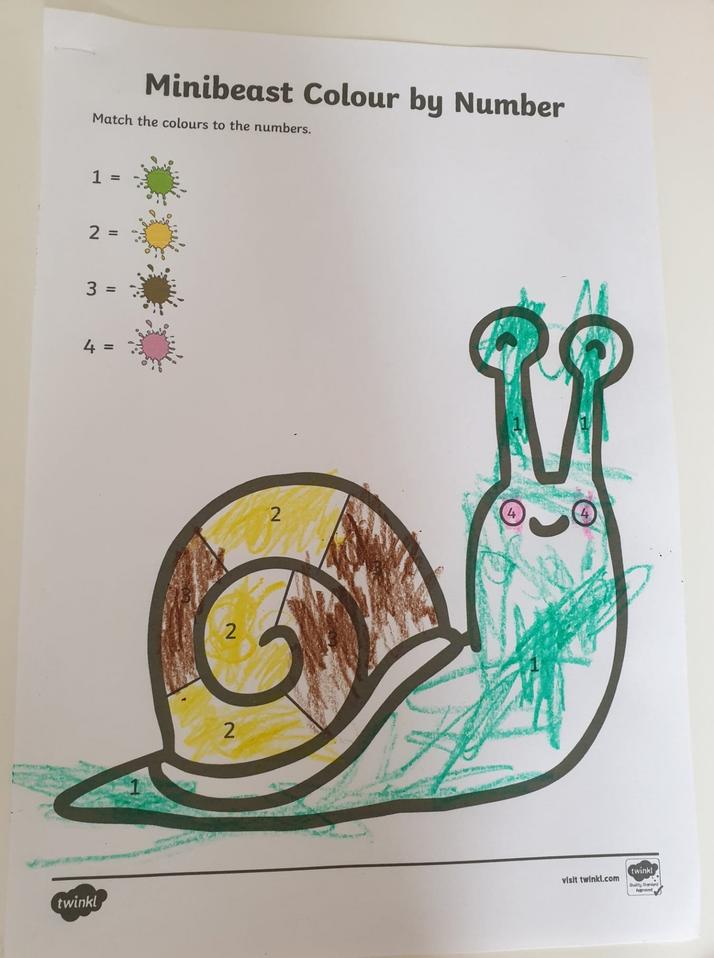 Snail colour by numbers