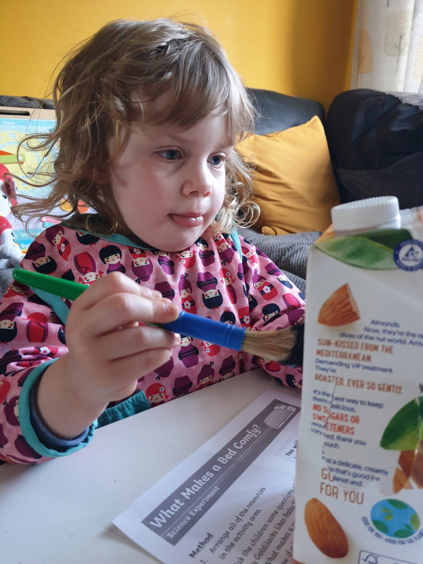 Painting puffin bird box