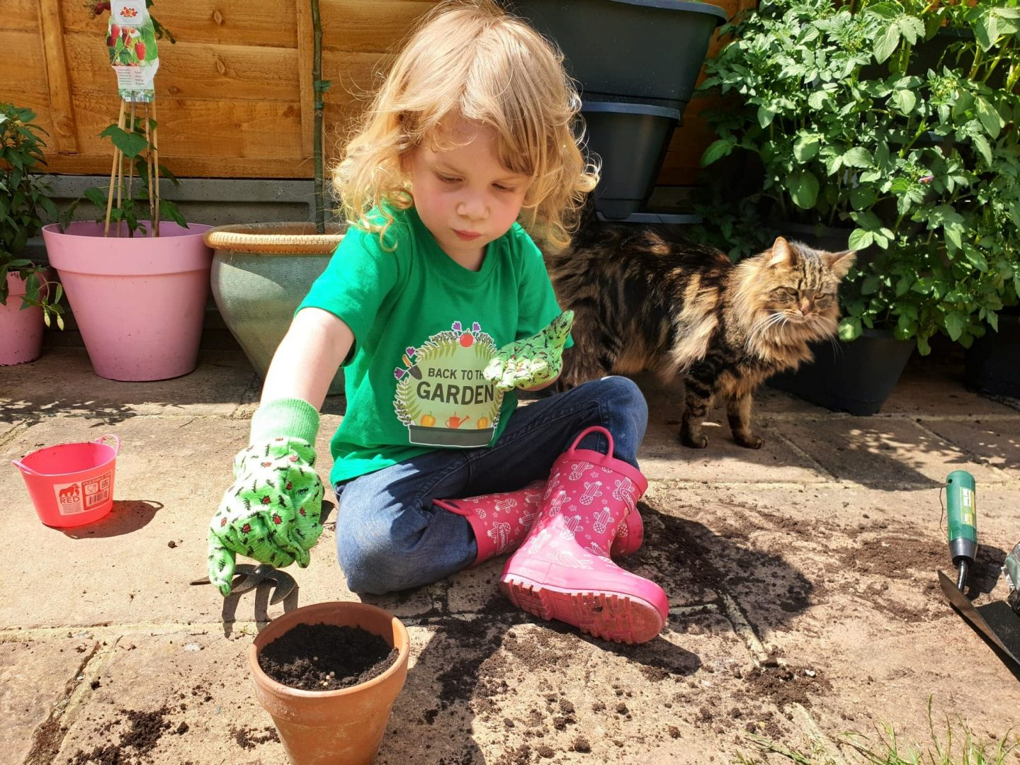 Sudocrem Back to the Garden - planting herb and vegetable seeds