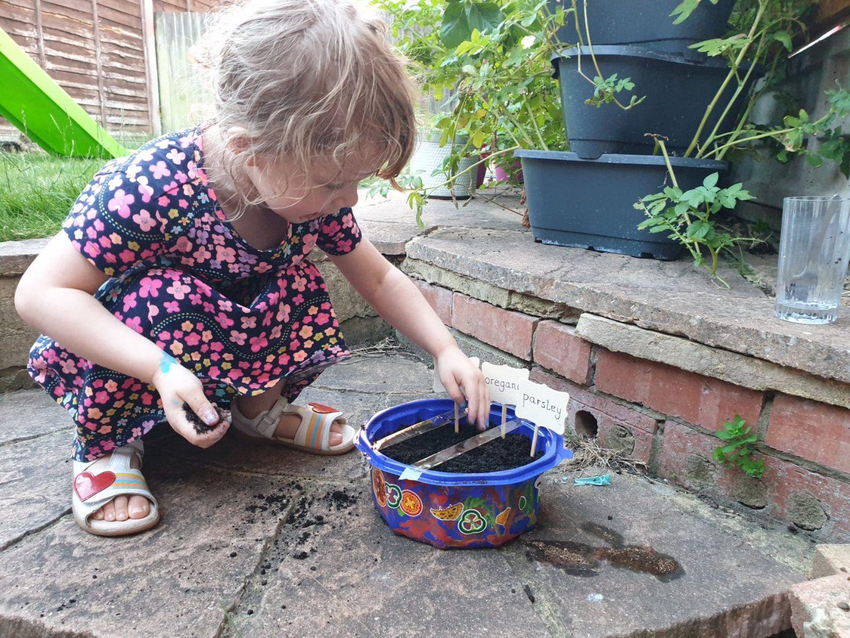 Child planting herbs