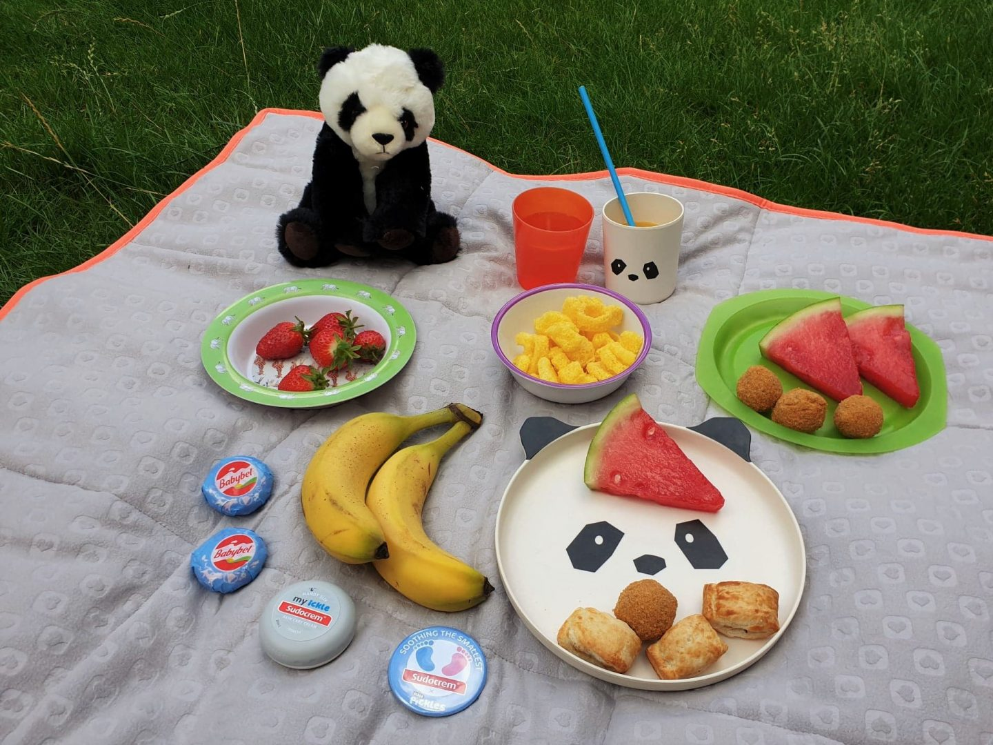 Sudocrem x Ickle Pickles Soothing the Smallest panda picnic