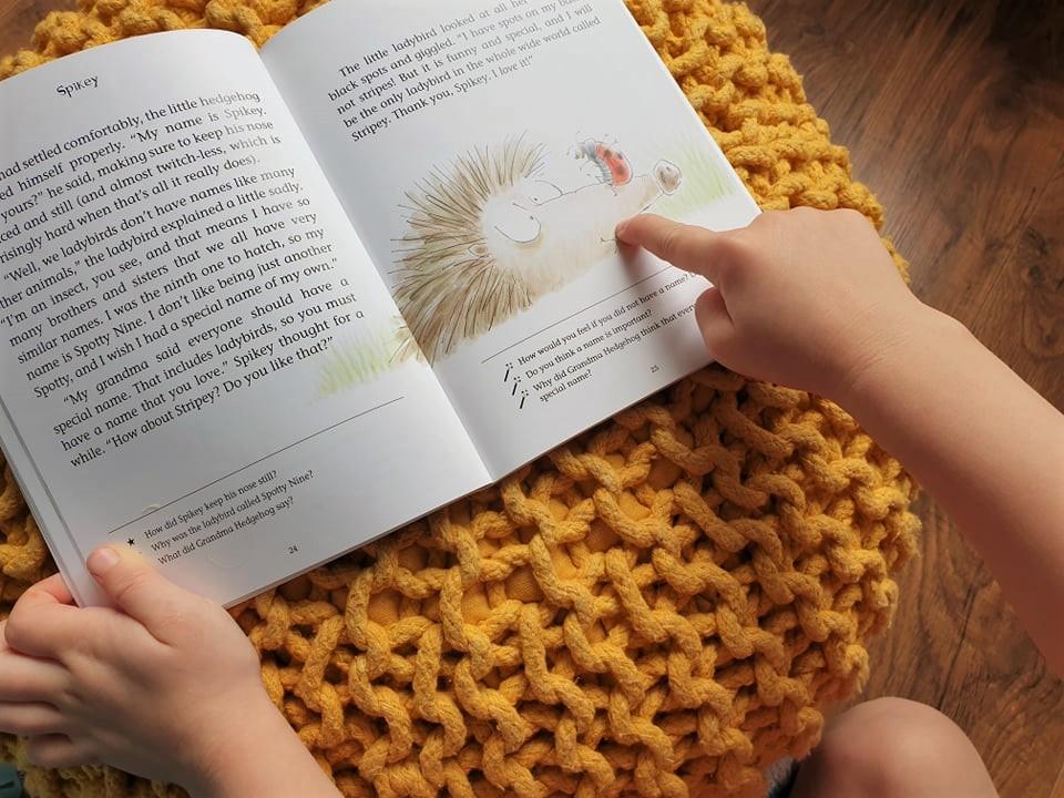 Spikey The Hedgehog by Tereza Anteneová