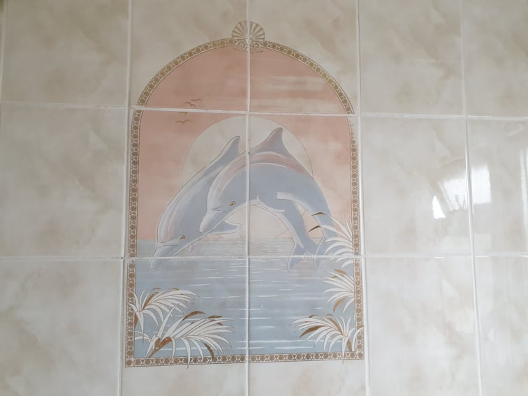 1980s dolphin bathroom tiles